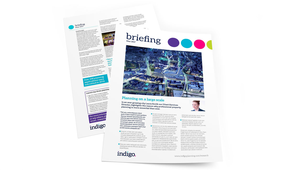 Indigo_briefing